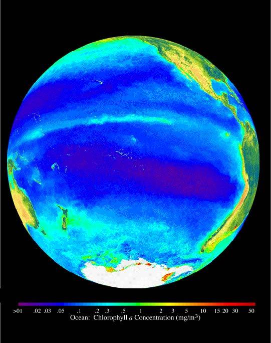nasa ocean color - photo #1