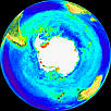 Image of The Global Biosphere (Polar Projection)