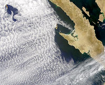 vortex street downwind of Guadalupe Island 3 June 2002