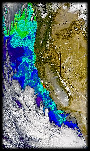 chlorophyll concentrations off the U.S. West Coast