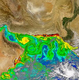 SeaWiFS view of northern Arabian Sea on 6 October 2004