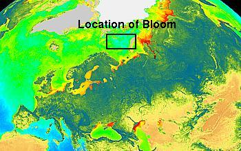 Locator map for Barents Sea Plankton Bloom